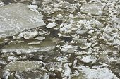 Broken ice and icy sludge in brownish river water in the thaw poster