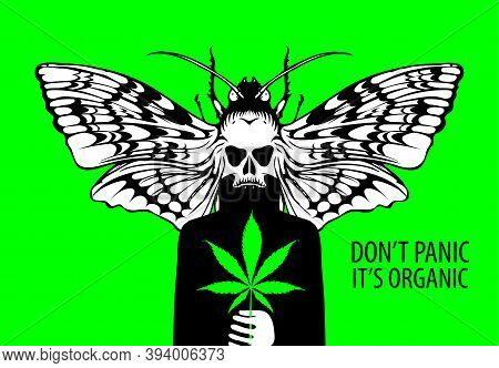 Vector Banner For Legalize Marijuana With Words Don't Panic It's Organic. Creative Illustration With