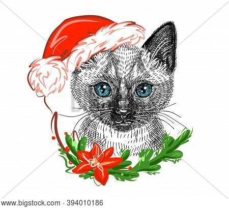 Illustration. Cute Siamese Kitten In A Christmas Santa Claus Hat. Sketch In A Realistic Style. Vecto