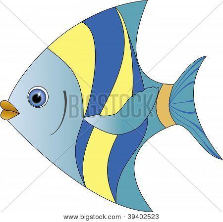 Vector colour fish