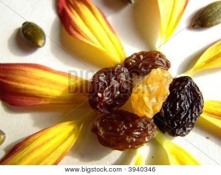 Raisin Flower
