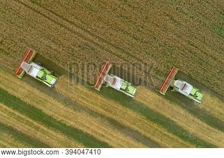 Three Combine Harvesters Harvest Wheat In The Field. Drone Shooting, Summer, Harvesters Are In A Row