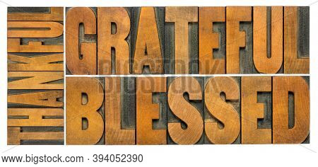thankful, grateful and blessed - isolated word abstract in vintage letterpress wood type, Thanksgiving theme and greeting card or web banner