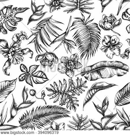 Seamless Pattern With Black And White Monstera, Banana Palm Leaves, Strelitzia, Heliconia, Tropical