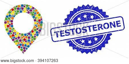 Round Dot Mosaic Map Mark And Testosterone Scratched Stamp Seal. Blue Stamp Includes Testosterone Ca
