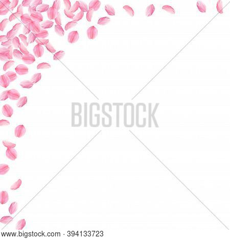 Sakura Petals Falling Down. Romantic Pink Bright Medium Flowers. Thick Flying Cherry Petals. Square