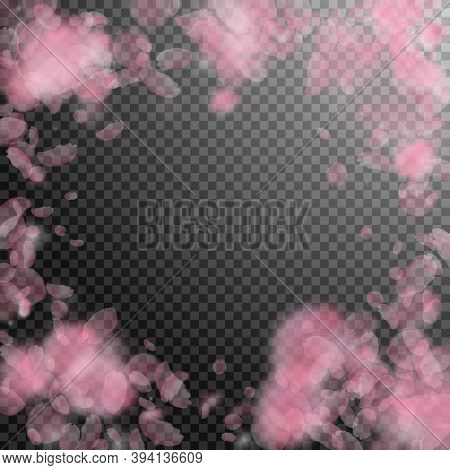 Sakura Petals Falling Down. Romantic Pink Flowers Vignette. Flying Petals On Transparent Square Back
