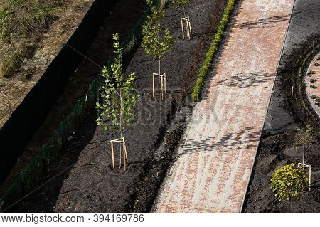 Improvement Of The Courtyard Paving Slabs, Unfinished Work On Laying Paving Slabs. Laid New Paving S