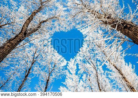 Cold Winter, Beautiful Snow Scenery, Ice And Snow Spectacular Scenery.