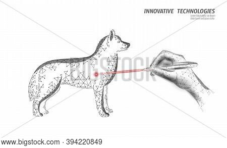 Veterinary Clinic Dog Pet Surgery Operation. Low Poly Polygonal 3d Dog Silhouette Laser Doctor Compa