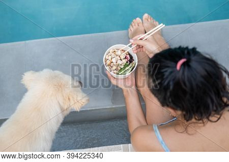 Woman Sitting By The Pool With Her Yellow Dog And Eating Takeout Poke Bowl Food
