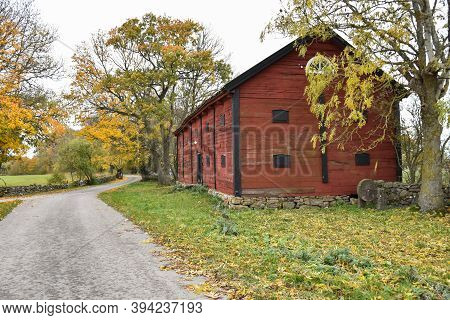Fall Season By A Winding Country Road On The Swedish Island Oland