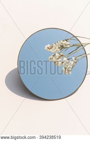 Dried white statice flower over a round mirror