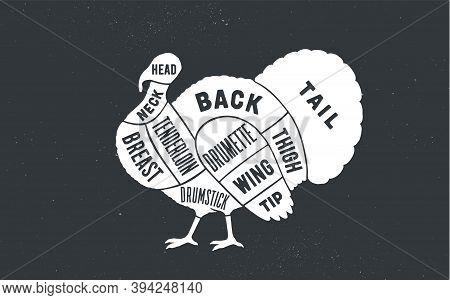 Turkey. Butcher Guide Scheme. Turkey Chart. Turkey Silhouette, Chalk, Blackboard. Poster For Butcher