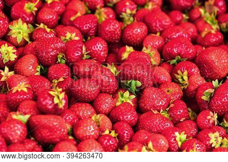 fresh strawberries from garden as background