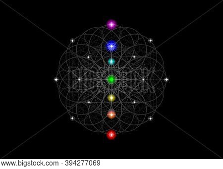 Seed Of Life Symbol Sacred Geometry. Esoteric Flower Of Life And Colorful Seven Chakras. Geometric M