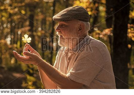 See Beauty In Simple Things. Curiosity To Botany. Explore World Around. Pensioner Hiking In Forest O