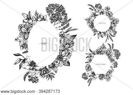 Floral Frames With Black And White Anemone, Lavender, Rosemary Everlasting, Phalaenopsis, Lily, Iris