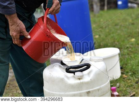 Pressed And Squeezed Apple Juice Flows From The Press Into The Bucket