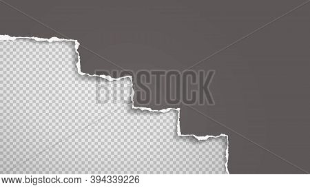 Piece Of Torn Dark Grey Paper Is On White Transparent Background For Text, Advertising Or Design. Ve