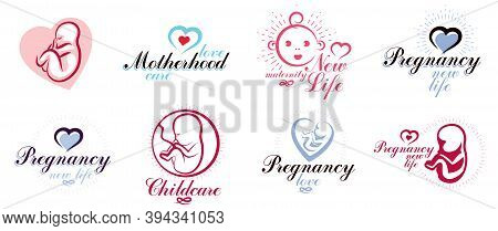 Pregnancy And Motherhood Theme Vector Illustrations Set Fetus Drawings Isolated On White Background,