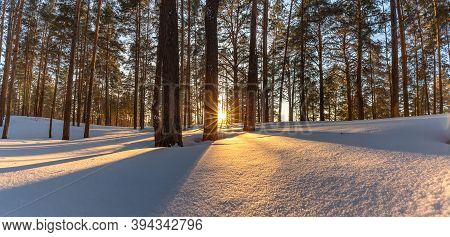 Beautiful Snowy Winter Landscape Panorama With Forest And Sun During Golden Hour. Winter Sunset In F