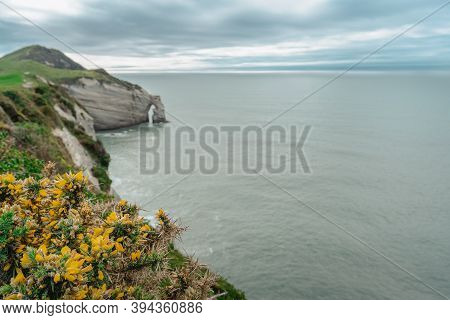 Amazing View Of Cape Farewell From The Top Of The Cliffs. New Zealand.