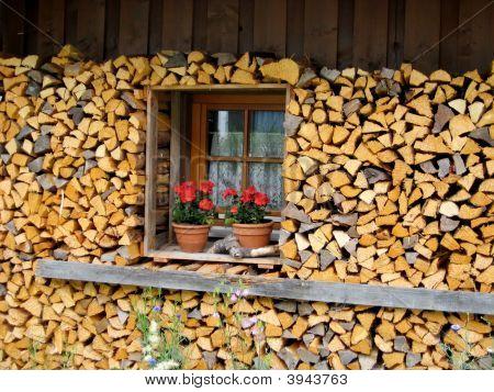 Woodpile And Window