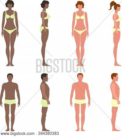 Black And White Female Male Anatomy Human Character, People Dummy Front And View Side Body Silhouett