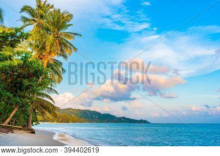 Horizontal Photo, Beach On Koh Samui In Thailand, Paradise, Sunny Beach, Coconuts And Palm Trees, Su