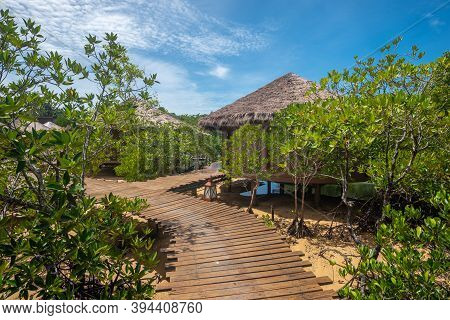View Of Small Huts In Mangrove Forest At Ranong Province, Thailand.