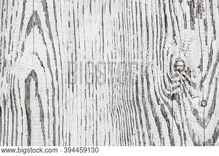 White Wood Texture. Bright Paint Plank Background. Wooden Desk Board. Natural Wood Pattern With Knot