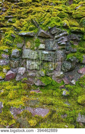 Old Green Mossy Wall Stones Close Up View