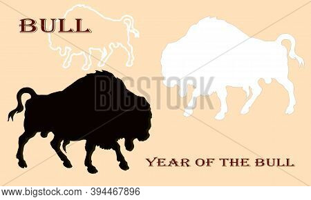 Bison, Two Silhouettes, Black And White Bulls And A White Border, Isolated Image On A Colored Backgr