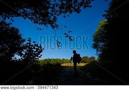 Adult Tourist  Trekking In Autumn Woods, Photo Taken In Slovakian Velka Fatra Mountains, Path Throug