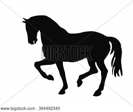 Drawing Isolated Black Silhouette Of A Prancing Horse