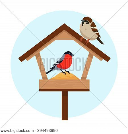 Bird Feeder And Two Birds In Cold Weather. Hungry Sparrow And Bullfinch In The Feeder. Vector Illust