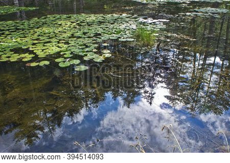 Small Lake Mirroring, Natural Landscape In Epirus, Ioannina, Greece