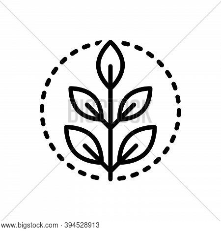 Black Line Icon For Fresh Green Natural Original Leaf Ecology Environment Floral Organic