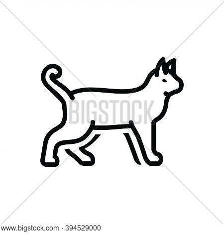 Black Line Icon For Animal Cattle Beast Livestock Brute Fauna Natural Dog Creature