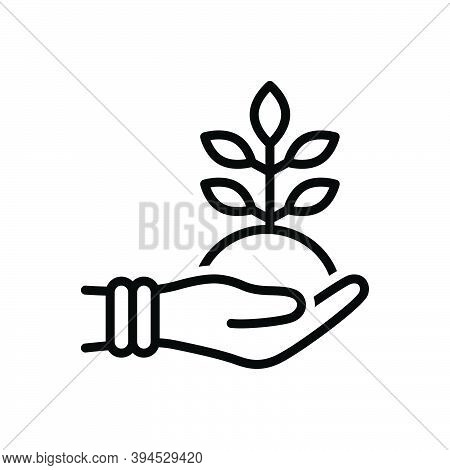 Black Line Icon For Friendly Protection Fresh Green Natural Original Leaf Ecology Environment Floral