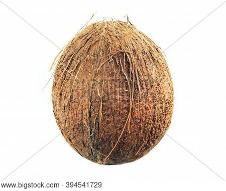 Coconut Isolated On White Background. Collection. A Whole Coconut.