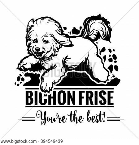 Bichon Frise In Jump - Dog Happy Face Paw Puppy Pup Pet Clip Art K-9 Cop Police Logo Svg Png Clipart