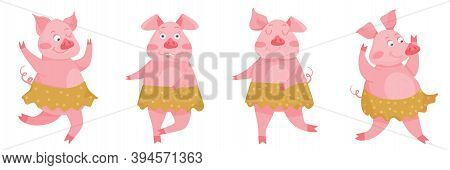 New Year Greeting Set Of Card With Funny Pigs. Cute Pigs Dance In Skirts. Symbol Of 2019 On The Chin