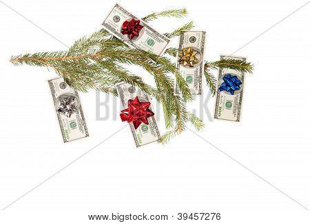 Dollars on fir tree