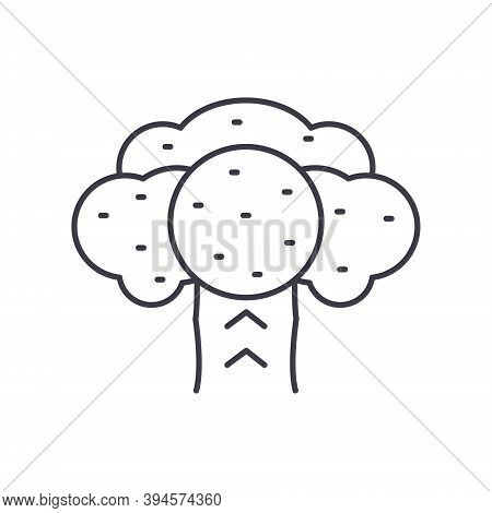 Brocoli Icon, Linear Isolated Illustration, Thin Line Vector, Web Design Sign, Outline Concept Symbo