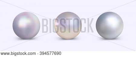 Pearl Set For Use In Logo Or Decoration Design. Vector Realistic Clipart. Vector Elegant Pearls Coll