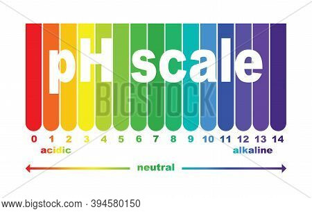 Scale Of Ph Value For Acid And Alkaline Solutions, Infographic Acid-base Balance. Scale For Chemical