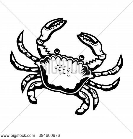Retro Sticker With Sand Crab Vector Illustration. Vintage Crab For Tattoo Or Promotional Label For H
