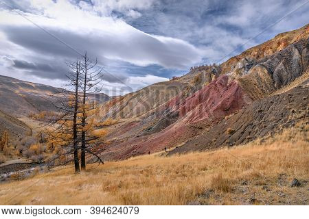 Colorful Autumn Landscape With Multicolored Mountains With Cracks And Rifts, Winding River And Golde